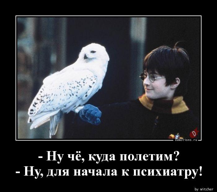 - Ну чё, куда полетим? - Ну, для начала к психиатру!