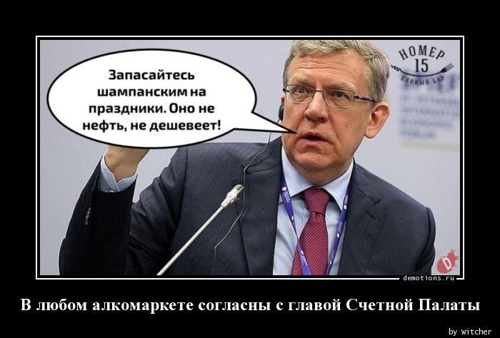 В любом алкомаркете согласны с главой Счетной Палаты