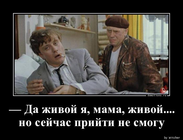 — Да живой я, мама, живой....  но сейчас прийти не смогу
