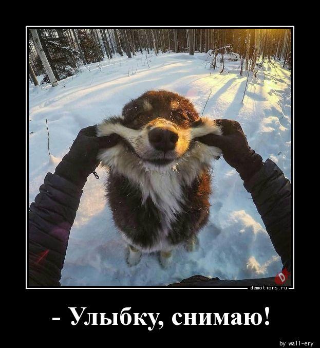 - Улыбку, снимаю!