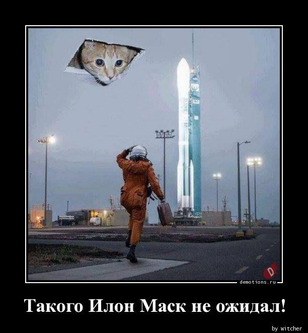 Такого Илон Маск не ожидал!