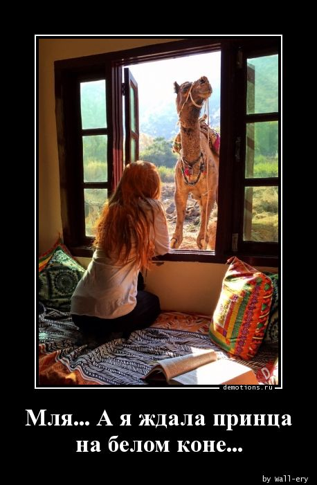 Мля... А я ждала принца на белом коне...