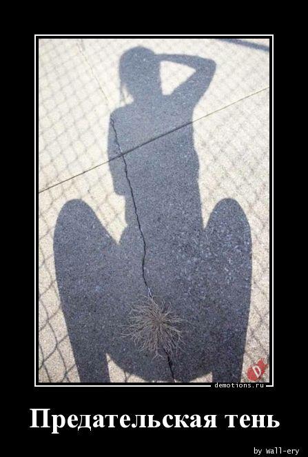 Предательская тень