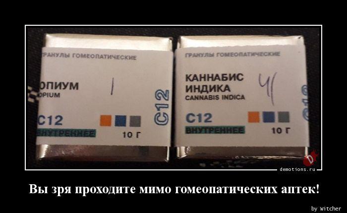 Вы зря проходите мимо гомеопатических аптек!
