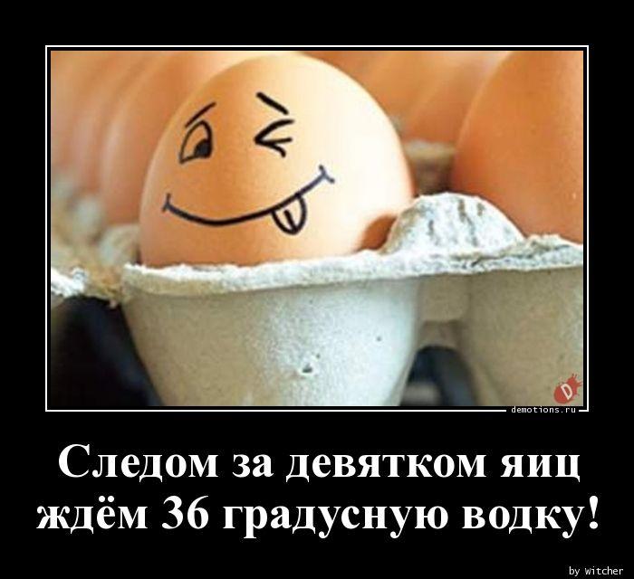 Следом за девятком яиц  ждём 36 градусную водку!