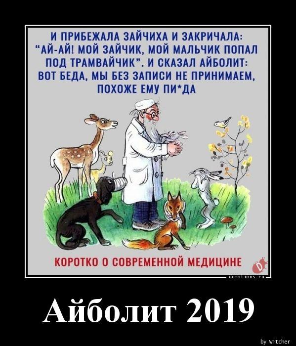 Айболит 2019
