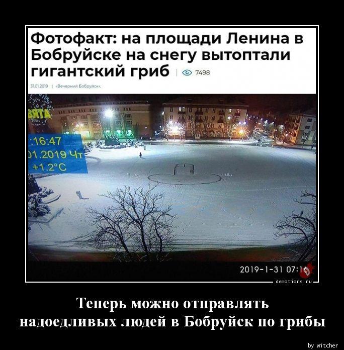 Теперь можно отправлять  надоедливых людей в Бобруйск по грибы