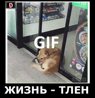 ЖИЗНЬ - ТЛЕН
