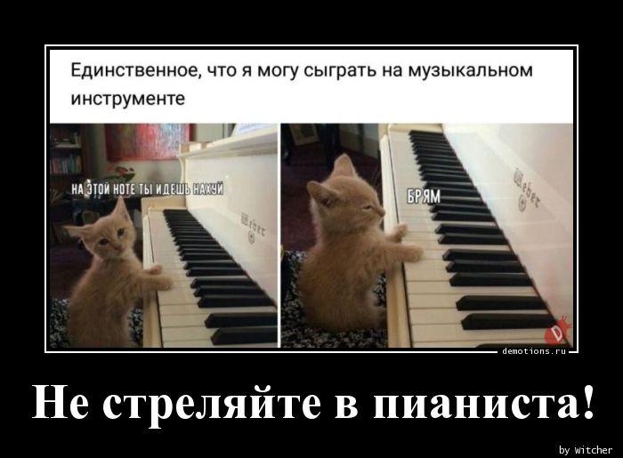 Не стреляйте в пианиста!