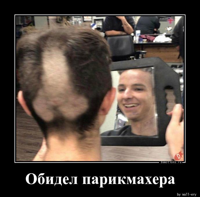 картинка не спорь с парикмахером имеет