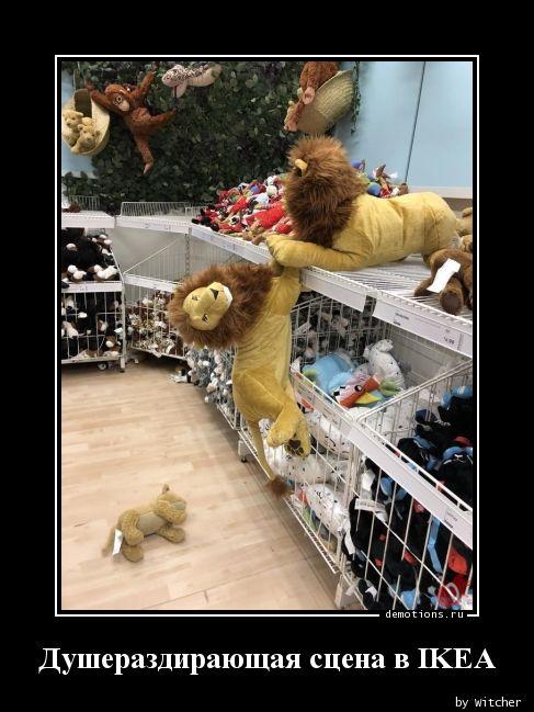 Душераздирающая сцена в IKEA