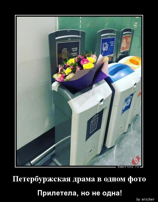 Петербуржская драма в одном фото