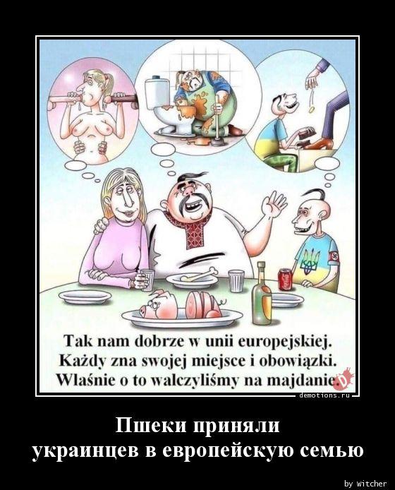 Пшеки приняли украинцев в европейскую семью