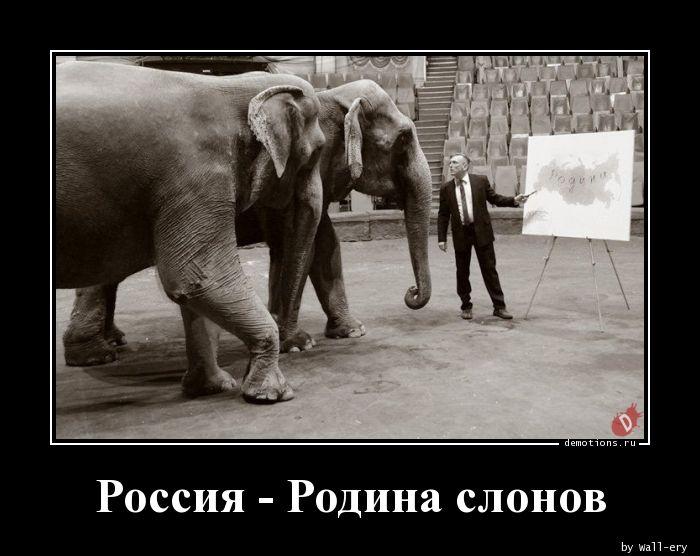 Россия - Родина слонов