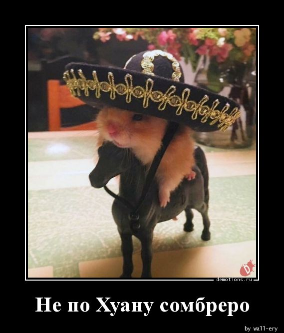 Не по Хуану сомбреро