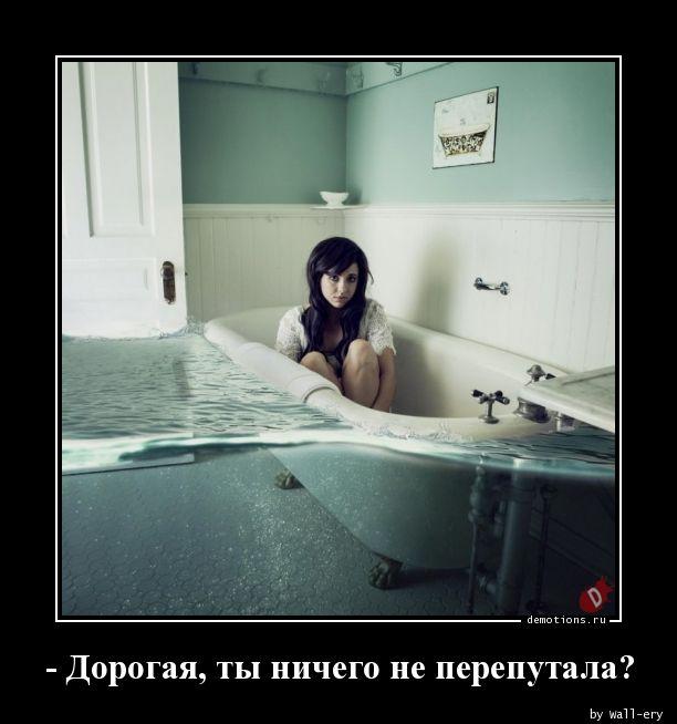 - Дорогая, ты ничего не перепутала?