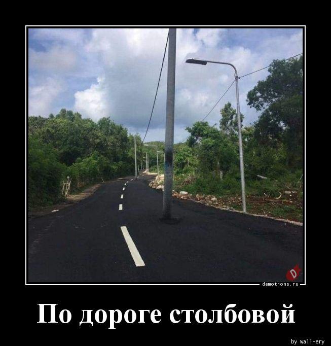 По дороге столбовой