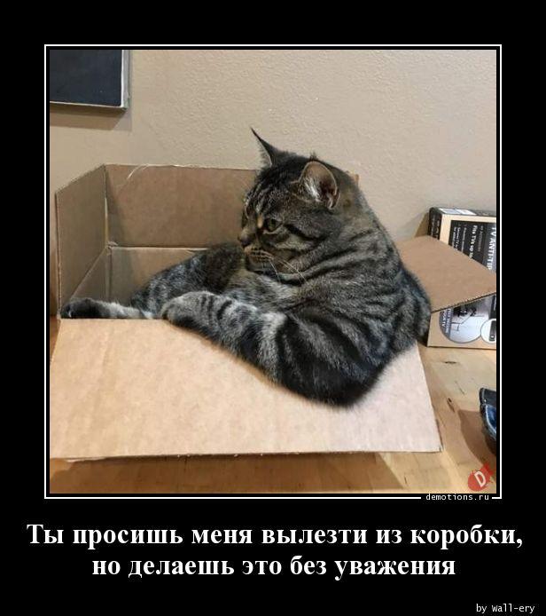 Ты просишь меня вылезти из коробки, но делаешь это без уважения