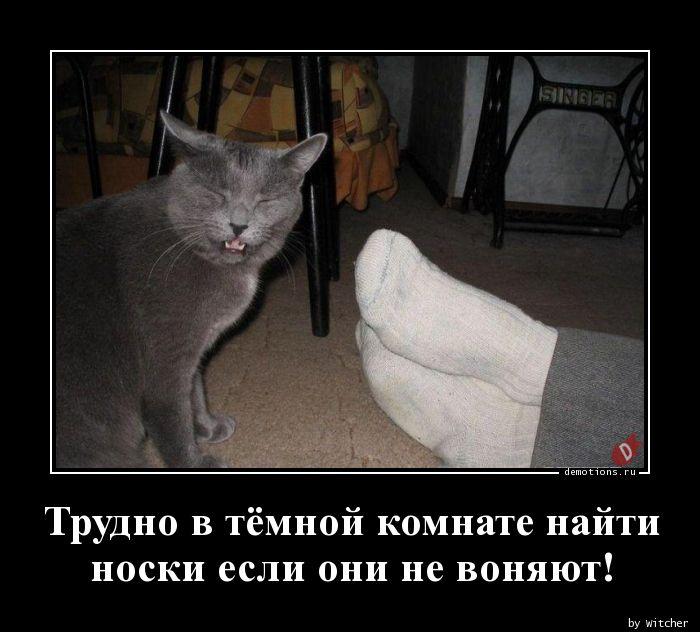Трудно в тёмной комнате найти   носки если они не воняют!