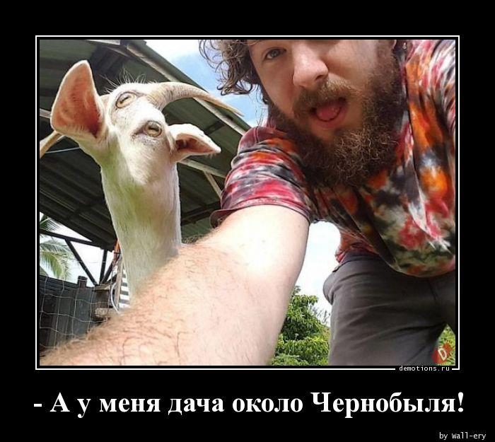 - А у меня дача около Чернобыля!