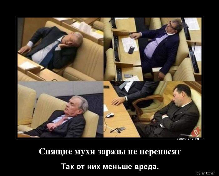 Спящие мухи заразы не переносят