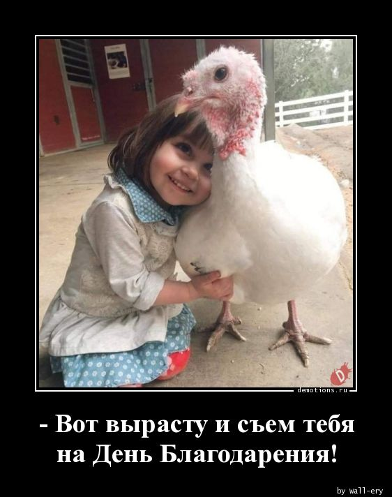 - Вот вырасту и съем тебя на День Благодарения!