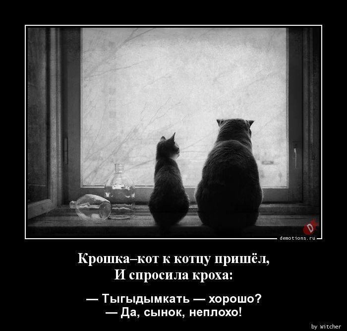 Крошка–кот к котцу пришёл, И спросила кроха: