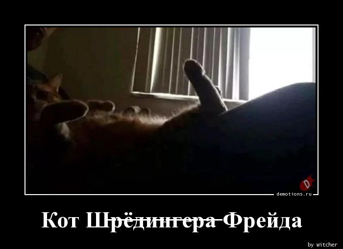 Кот Ш̶р̶ё̶д̶и̶н̶г̶е̶р̶а̶ Фрейда