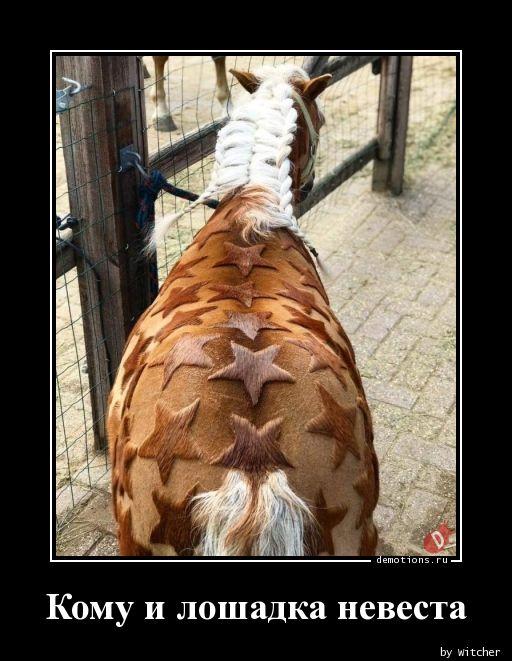 Кому и лошадка невеста