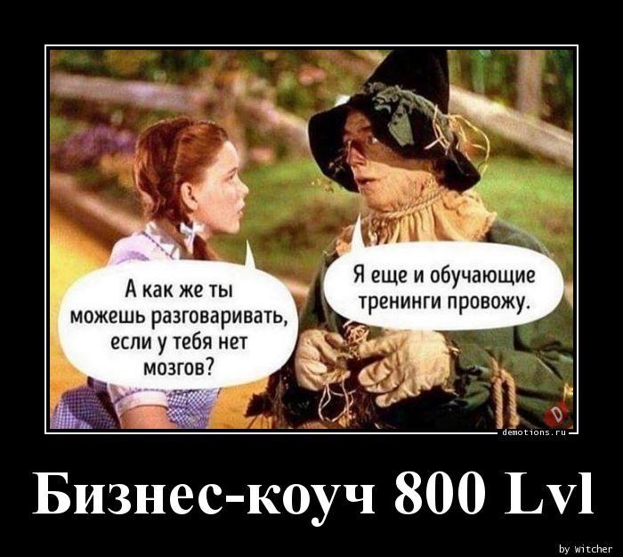 Бизнес-коуч 800 Lvl