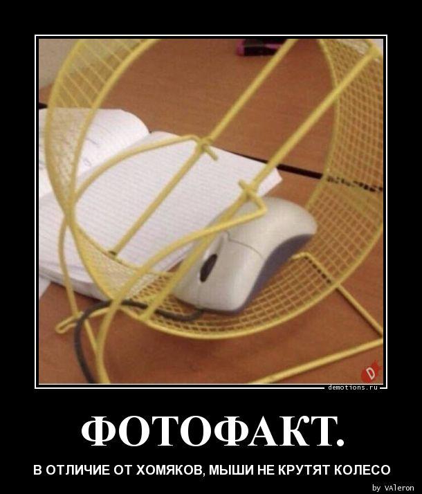 ФОТОФАКТ.