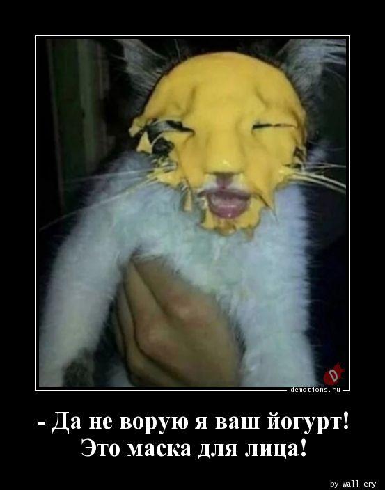 - Да не ворую я ваш йогурт! Это маска для лица!