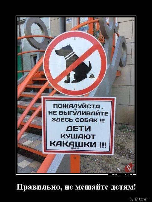 Правильно, не мешайте детям!