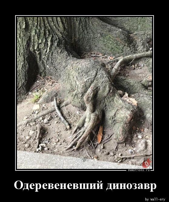 Одеревеневший динозавр