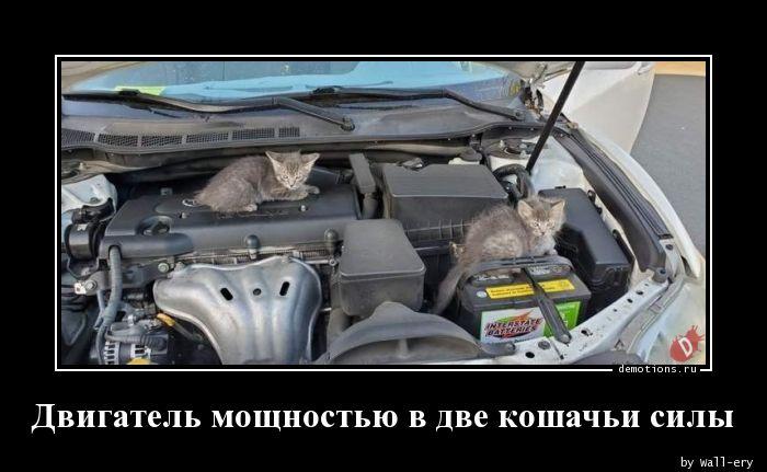 Двигатель мощностью в две кошачьи силы