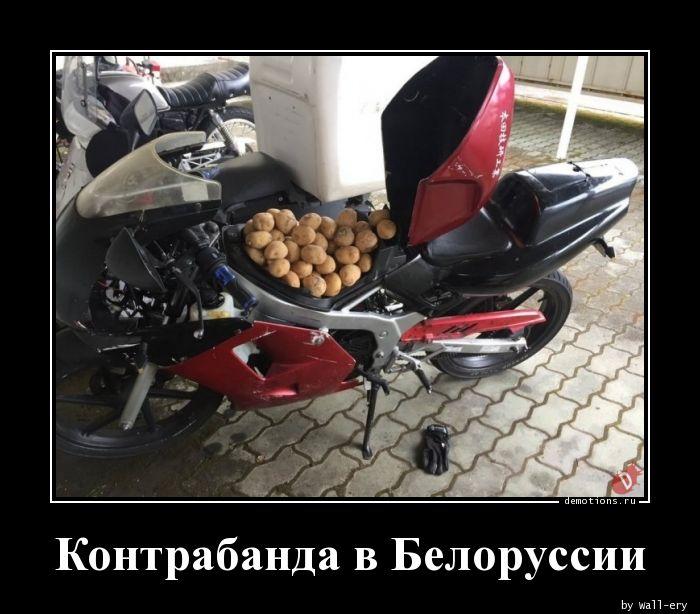 Контрабанда в Белоруссии