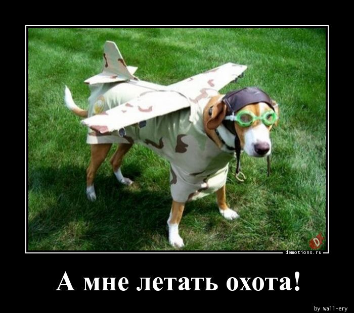 А мне летать охота!