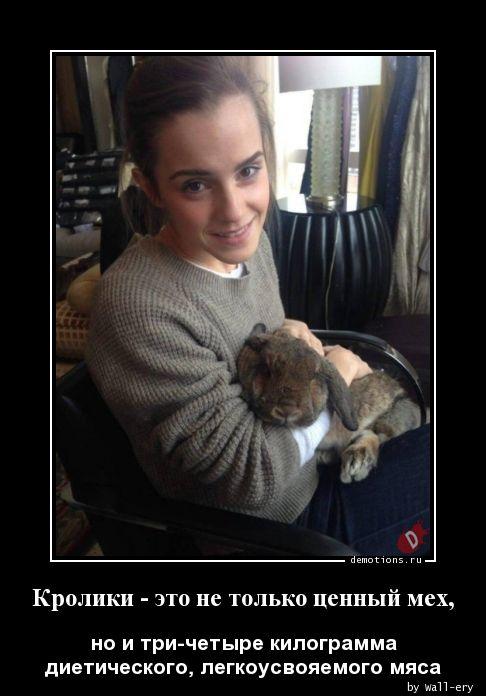 Кролики - это не только ценный мех,