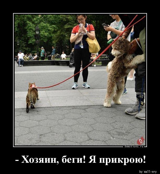 - Хозяин, беги! Я прикрою!