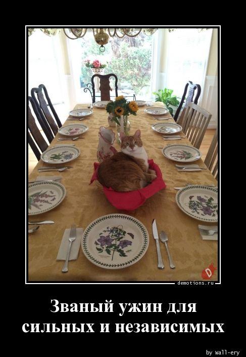 Званый ужин для сильных и независимых