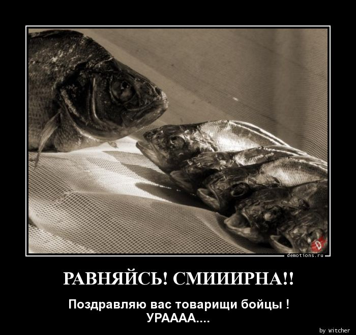 РАВНЯЙСЬ! СМИИИРНА!!