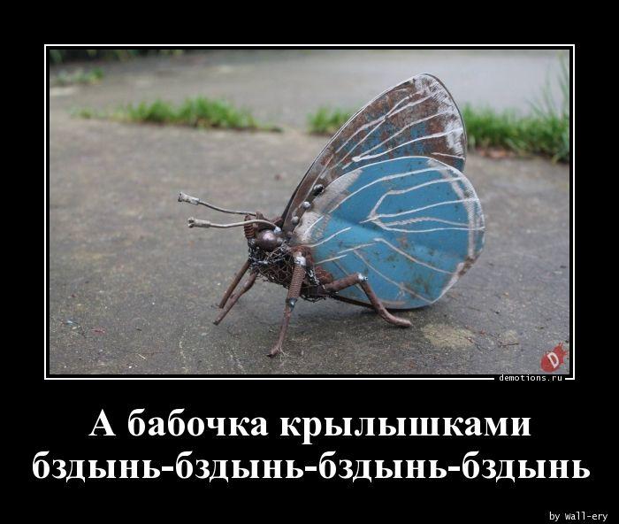 А бабочка крылышками бздынь-бздынь-бздынь-бздынь