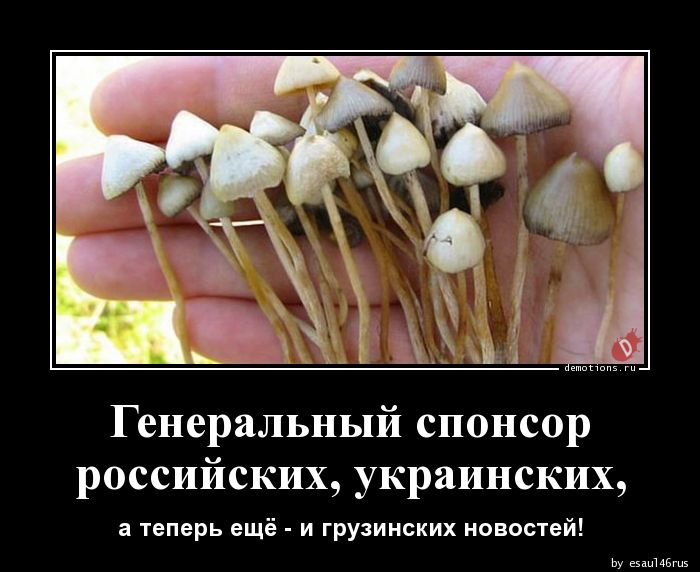 Генеральный спонсорроссийских, украинских,