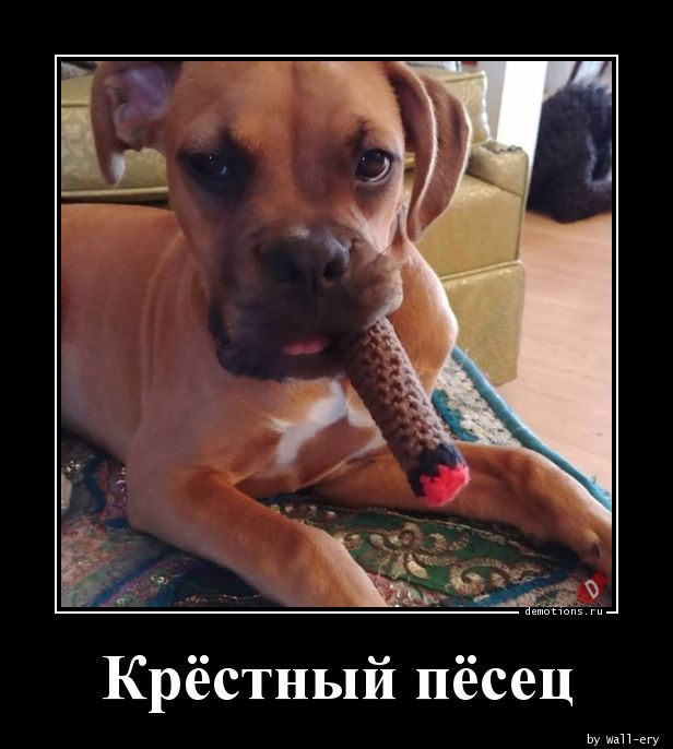 Крёстный пёсец
