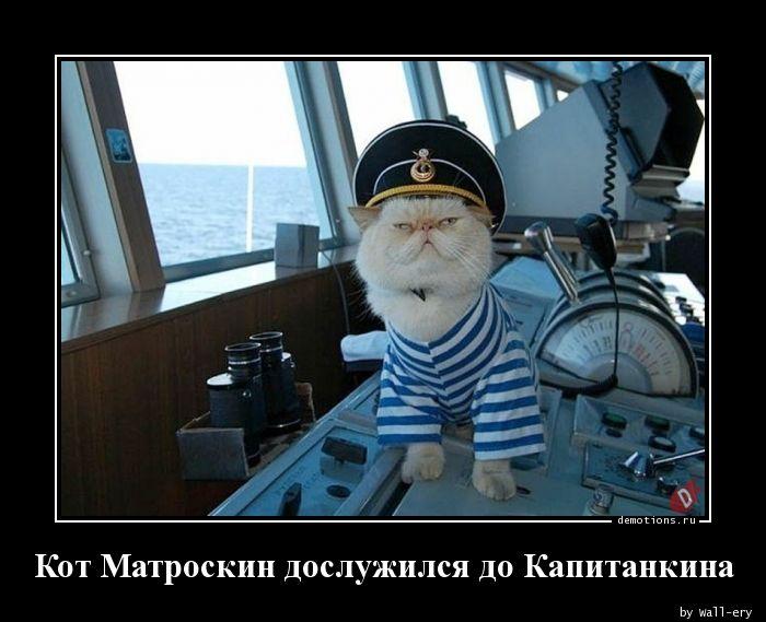 Кот Матроскин дослужился до Капитанкина