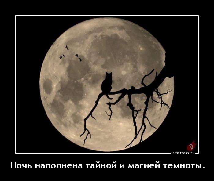 Ночь наполнена тайной и магией темноты.