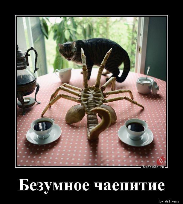 Безумное чаепитие