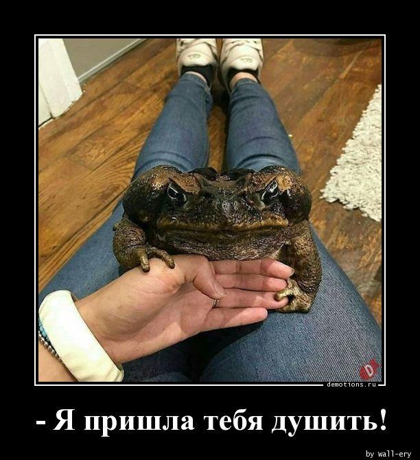 - Я пришла тебя душить!