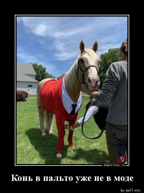 Конь в пальто уже не в моде