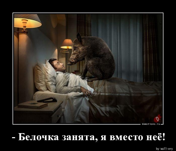 - Белочка занята, я вместо неё!